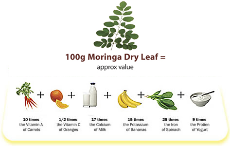 Dry leaf nutrient value