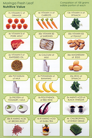 Moringa's nutrient value vs. other foods