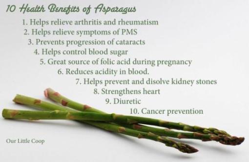 Asparagus heals